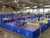 Séptima edición del Bayamón Open tenis de mesa