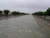 Ambiente - Escorrentías Pluviales: Canal