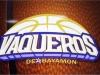 Logo de equipo de Vaqueros