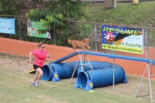 Participante junto a su perro en acción