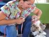 Perro participante del Curso de Obediencia Canina
