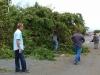 Alcalde y equipo comprometido del municipio de bayamón talando árboles caídos