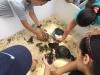 Niños jugando con algunos animalitos del parque de las ciencias