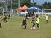 Bayamon Soccer Complex- Copa Alc-2-23-2019-11.jpg