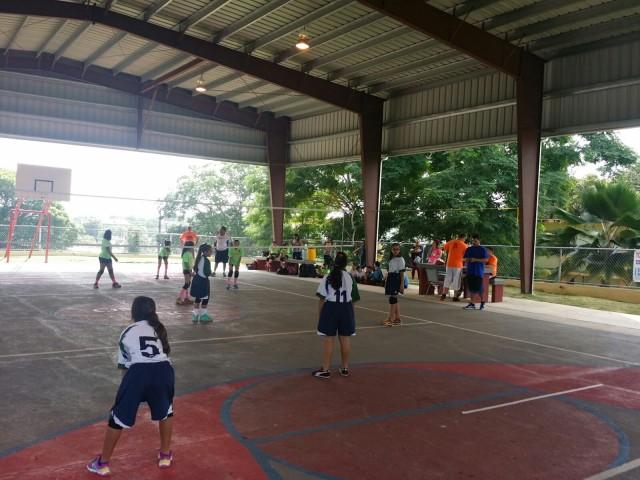 Torneo de voleibol escolar