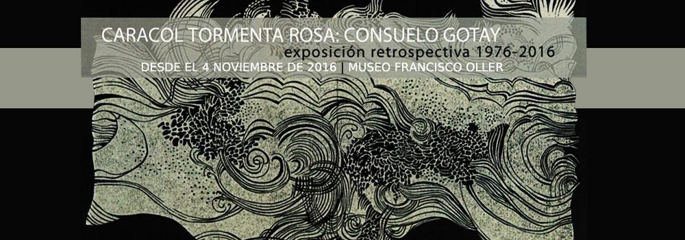 """Exhibición """"Caracol Tormenta Rosa"""" de la artista Consuelo Gotay en el Museo Francisco Oller desde el 4 de noviembre de 2016"""