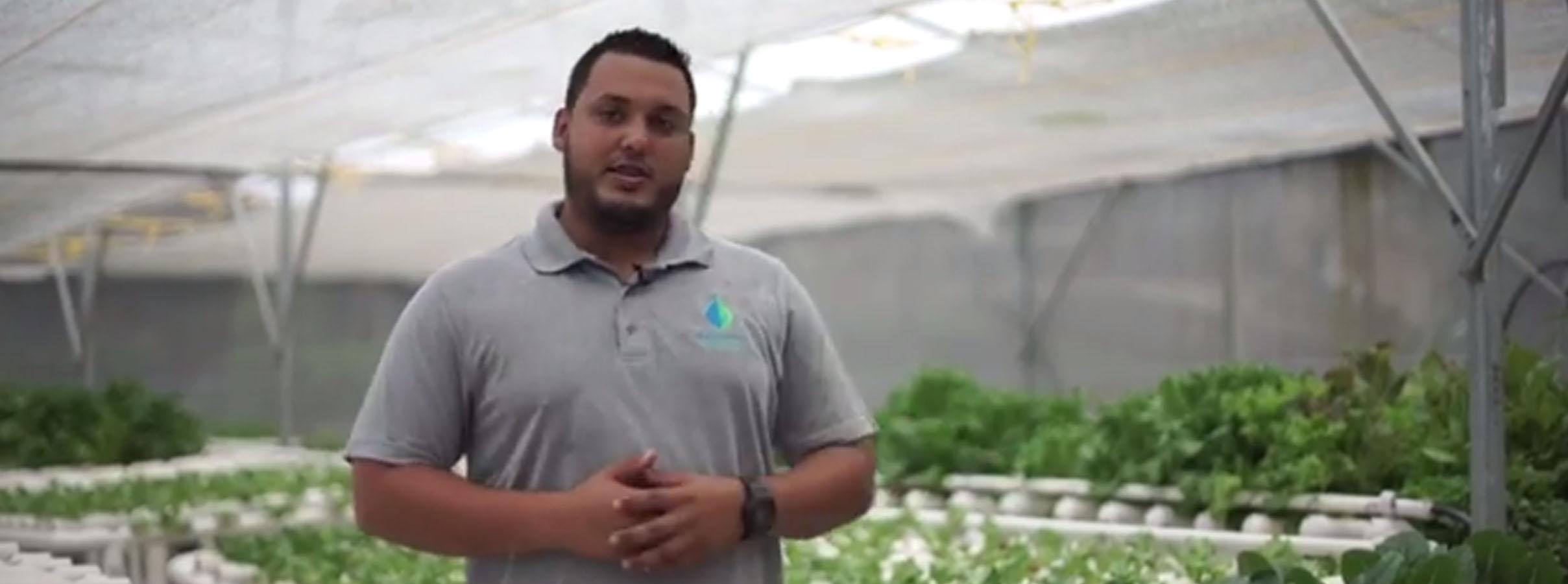 Joven Emprendedor en el Área de Agricultura en Bayamón Necesita de Nuestra Ayuda