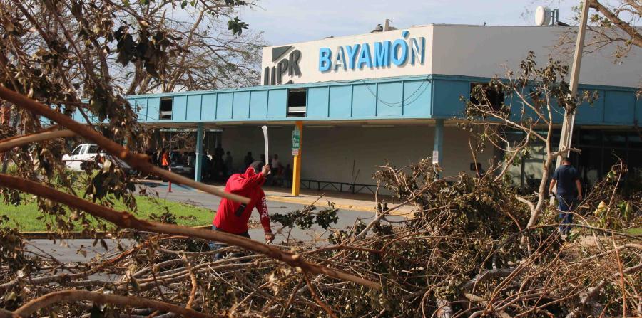 Voluntarios en la UPR de Bayamón