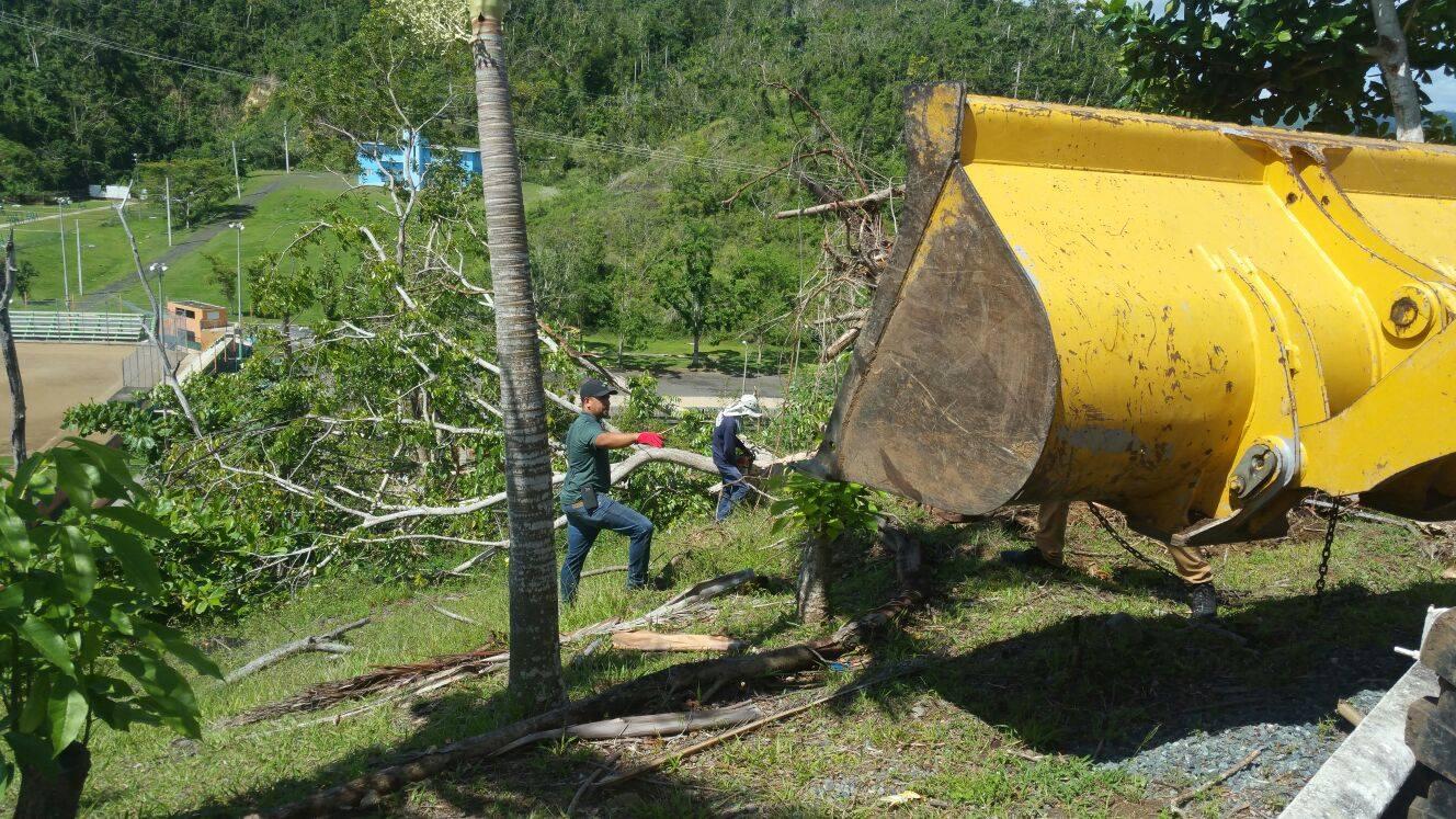 Continúan los Trabajos de Limpieza y Reconstrucción