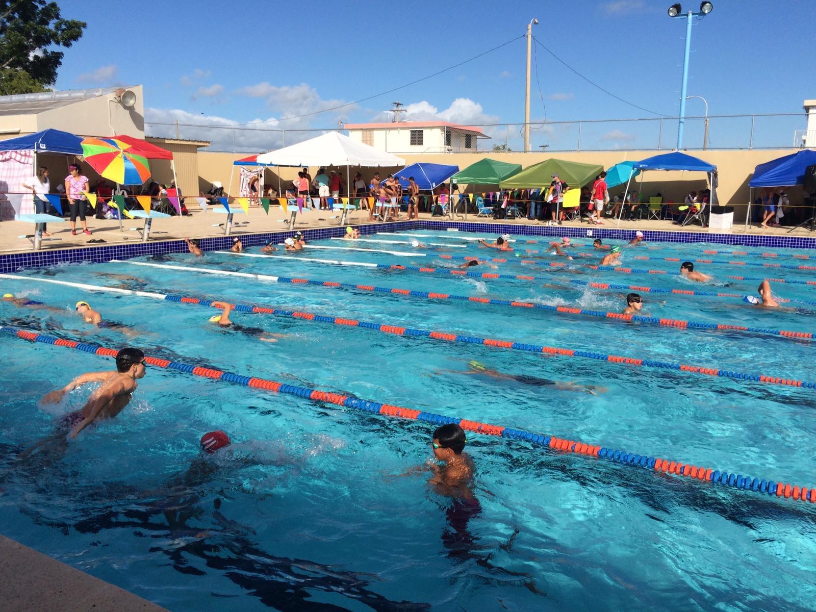 Competencias principiantes natación