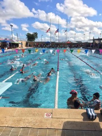 Competencias para principiantes natación