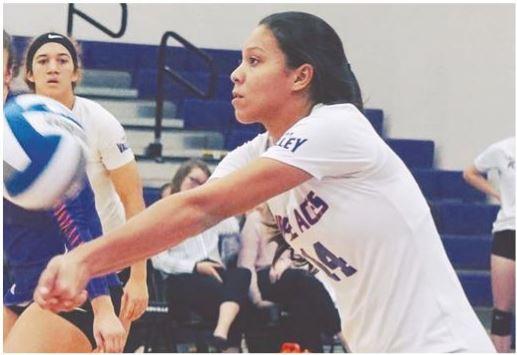 Regresa a Bayamón el Voleibol NCAA