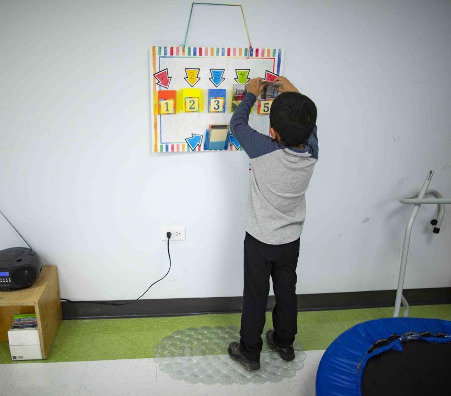 Ya es ley el proyecto que viabiliza las terapias de Educación Especial a distancia